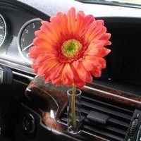 Auto Vase Orange Daisy Flower Decorative Girly Car Accessory