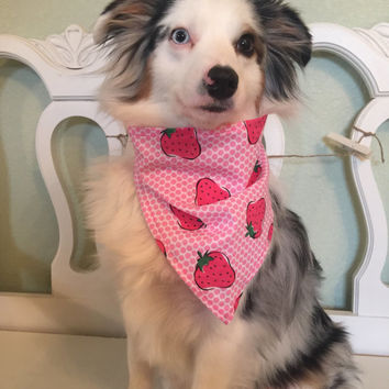 Dog Bandana - Strawberry Sass