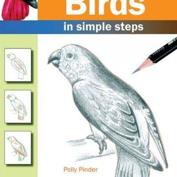 How to Draw Birds: In Simple Steps (How to Draw)