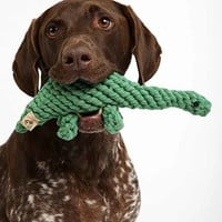 Jax & Bones Dinosaur Rope Dog Toy - Green One