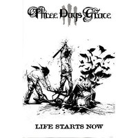 (24x36) Three Days Grace Life Starts Now Music Poster Print