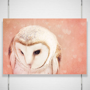 Valentines Owl Photography 8x12 Photograph of by jpgphotography