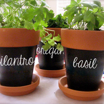 4 Herb Sticker Decals for Flower Pots, Gardens, Herbs, and Markers