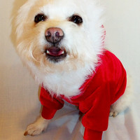 Santa Christmas Dog Hoodie by RockinDogs