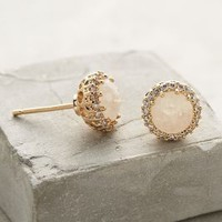 Aludra Posts by Anthropologie