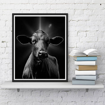 Cow Print, Farm Animal Wall Art, Printable cow, Black cow wall decor, Digital print, Large Poster 16x20, Farmhouse Decor, Greeting card 5X7