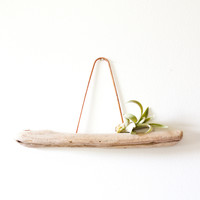 copper and driftwood air plant shelf