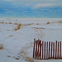 Path To The Beach In Winter by Dan Sproul
