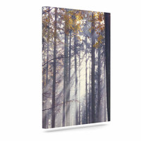 "Alison Coxon ""Autumn Sunbeams"" Trees Photography Canvas Art"