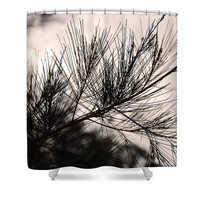 Pine Tree Needle Silhouette Shower Curtain for Sale by Ivy Ho