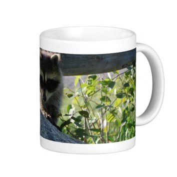 Baby Raccoon Rock Photo Classic White Coffee Mug