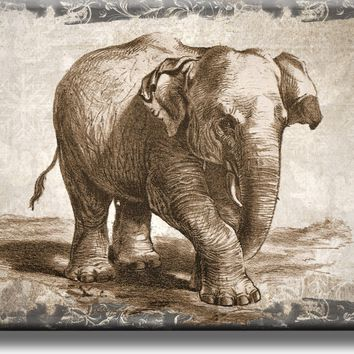 Vintage Elephant Picture on Acrylic , Wall Art Décor, Ready to Hang