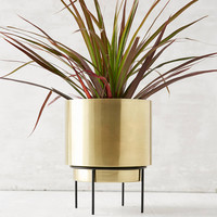 """Adelphi 6"""" Planter   Urban Outfitters"""