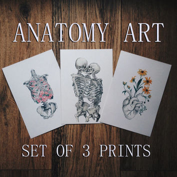 Valentine's present, anatomy art, postcard skeleton set, love, kiss, floral blossom heart, lungs, human, watercolor painting, print