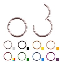 Titanium Piercing Segment Hinged Rings Cartilage Earrings Labret Lip Nose Piercing Body Jewelry PVD Universal 16G 14G G23 Grade