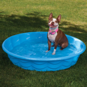Summer Escapes Poly Pool Pet Bath | Bathing Equipment | PetSmart