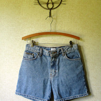 Denim Shorts jean shorts denim shorts blue stone wash fly front zipper vintage 90s fashion vtg preppy clothing Calvin Klein CK women size 4