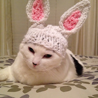 Easter Bunny Rabbit hat for extra small dog or cat beanie pet costume