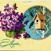Starlings, Spring, Nesting box, Vintage  Russian Postcard 1981