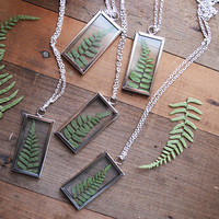 FORBIDDEN FOREST  Window Locket with Pressed Fern Leaf