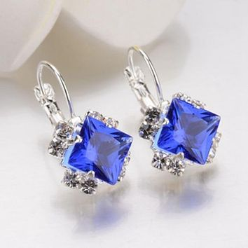 Police Support Princess Cut Rhinestone Cluster Earrings