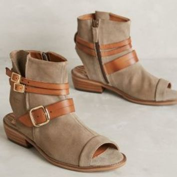Coqueterra Colt Line Shooties Taupe