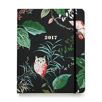 large hoot 17 month agenda