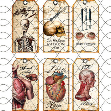 18 Anatomy Halloween Tags Antique Surgical Tools Labels Tags Digital Collage Sheet Download