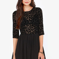 BB Dakota Corella Black Velvet Dress