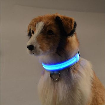 DogLemi Shiny Pet Dog Collars Puppy Leads Pet LED Light Collars Mascotas Cachorro Large Dogs Luminous Neck Ring Harness