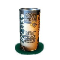 Jonsteen Growing Kit - Colorado Blue Spruce Tree