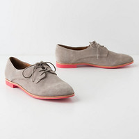 Vivid Beginning Oxfords