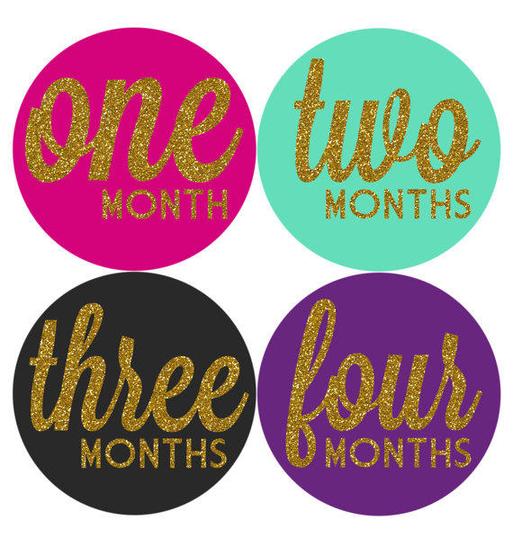 monthly baby milestone stickers baby from hautebelliesshop on