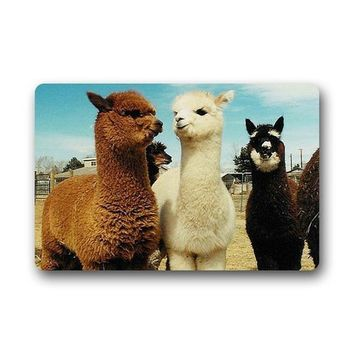 Memory Home Door Mats Llama Alpaca Doormat Indoor Bathroom Kitchen Machine Washable Home Floor Mats Rugs Carpet