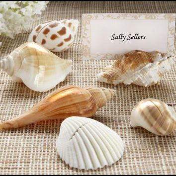 """Shells By The Sea"" Authentic Shell Place Card Holders With Matching Place Cards (Set Of 6)"