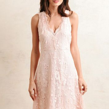 Krystal Lace Dress