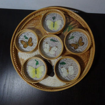 Vintage Butterfly Taxidermy Bamboo/Rattan Coasters Set of 6 and Serving Tray
