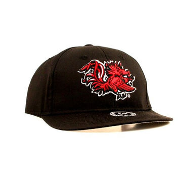 South Carolina Gamecocks Cap/hat