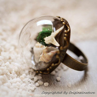 Nature Inspired Jewelry Real Ocean Series Rings Gift (HM0173)