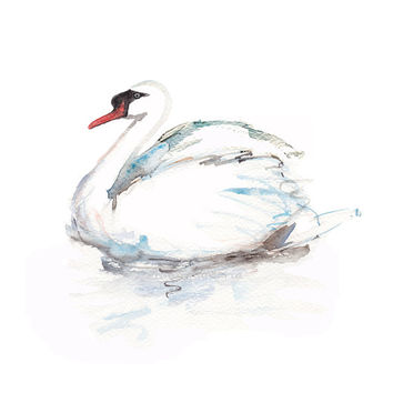 Swan Watercolor painting art animal zen aquarelle white bird giclee A4 print artwork