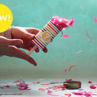 Confetti Push-Pop Revealers for Gender Reveal Parties