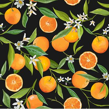 Black Background Oranges Fruits Multicolored Wallpaper Reusable Removable Accent Wall Retro Style Interior Art (wal012)