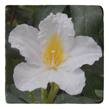 White Flower Photo Stone Trivet