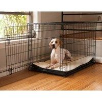 Snoozer Pet Dog Crate Pads 2 in. Foam | www.hayneedle.com