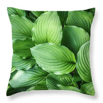 Beautiful Green Arc-shaped Leaves Throw Pillow