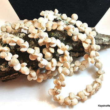 Beige Sea Shell Necklace Vintage Necklace Small Sea Shell Necklace 36 Inch Necklace Trochus Shell Lei Necklace Natural Shell Long Necklace