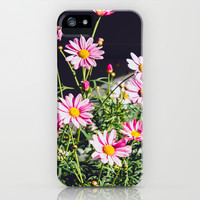 Pink Daisies iPhone & iPod Case by Pati Designs