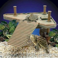 Reptology Turtle Pier Pet Supply For Small Turtles Frogs Newts Salamanders M Size - Default