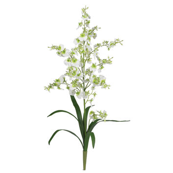 Dancing Lady Silk Orchid Flowers (6 Stems)
