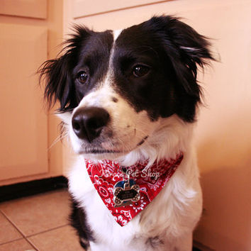Classic Red Dog Bandana with Space for Tags, Handmade Dog Scarf w ID Tag Slot, Pet Bandanna, Dog Accessories, Velcro Over the Collar Bandana